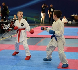 6 medali karateków